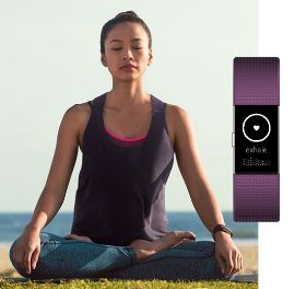 Charge 2 Fitbit Pulsometro