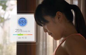 indice masa corporal fitbit aria